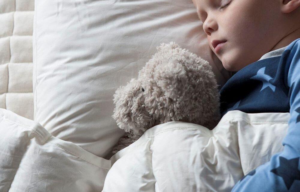 Kapok juniordyne – når dit barn skal sove godt